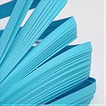 Quilling Papier