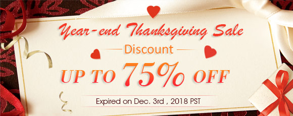 Year-end Thanksgiving Sale