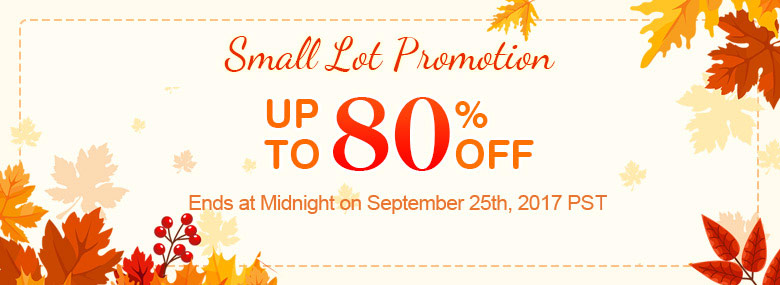 Small Lot Promotion Up To 80% OFF