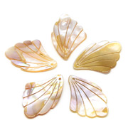 Freshwater Shell Pendants