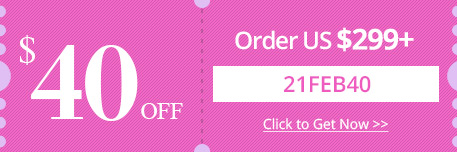$40 OFF Order over US $299+