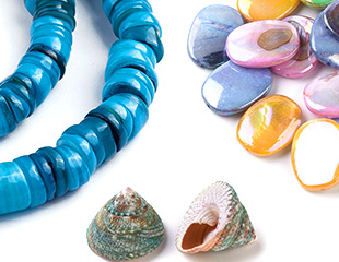 Shell Beads Up To 50% OFF